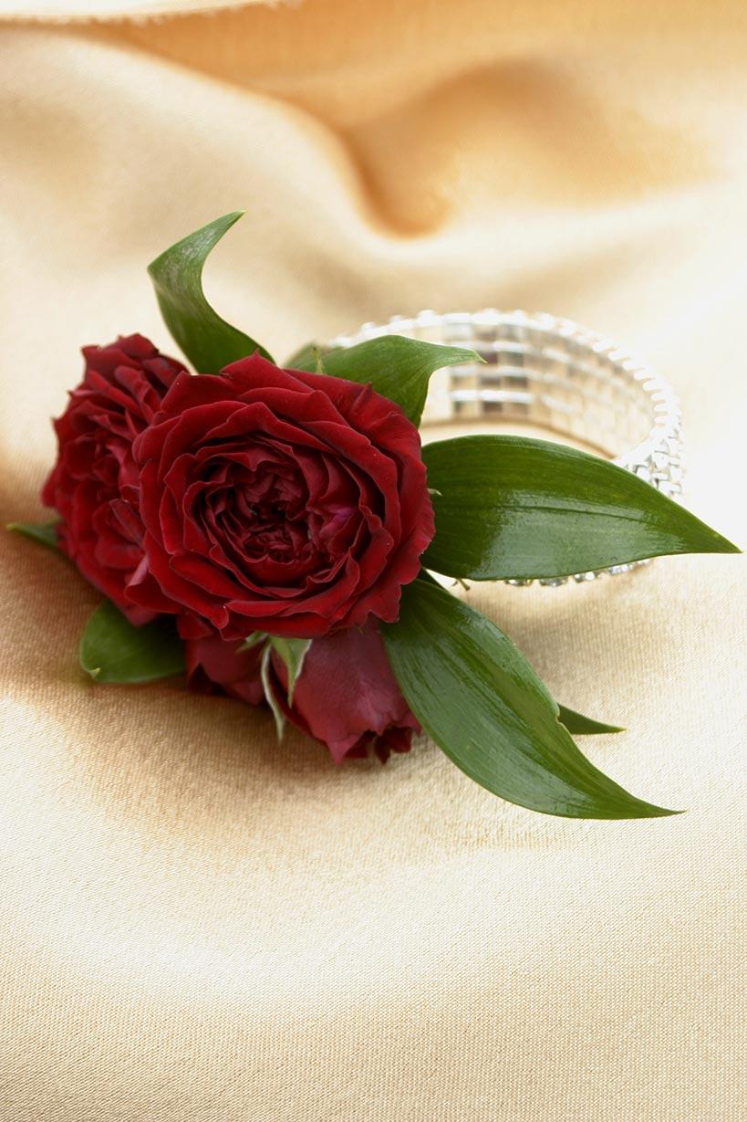 kezi-corsage-lovely-(2)